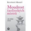 Moudrost šaolinských mistrů (autor Bernhard Moestl)