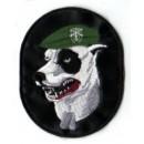 Nášivka Pitbull (Special Forces)